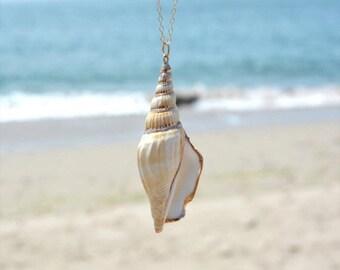 Seashell pendant etsy boho seashell pendant necklace long shell necklace statement necklace beach shell gold chain necklace aloadofball Gallery