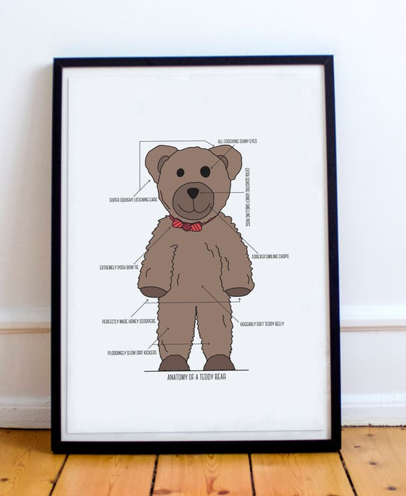Anatomy of a Teddy Bear Teddy Bear Typography Poster Print | Etsy