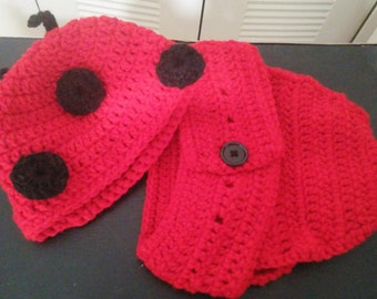 Lady Bug diaper cover and hat