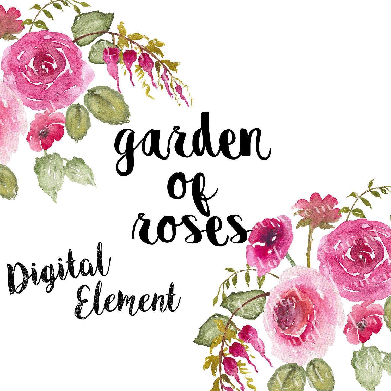 Watercolor Flowers Digital Floral Clipart Pink Rose Clip