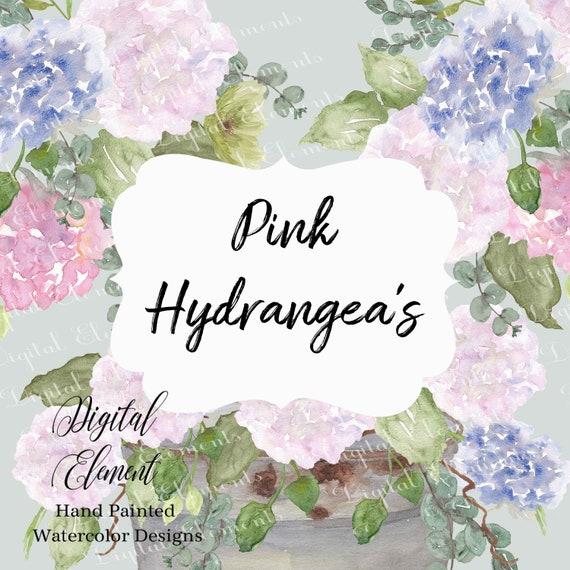 Pink Flower Clip-art Watercolor Hydrangeas Eucalyptus Pink
