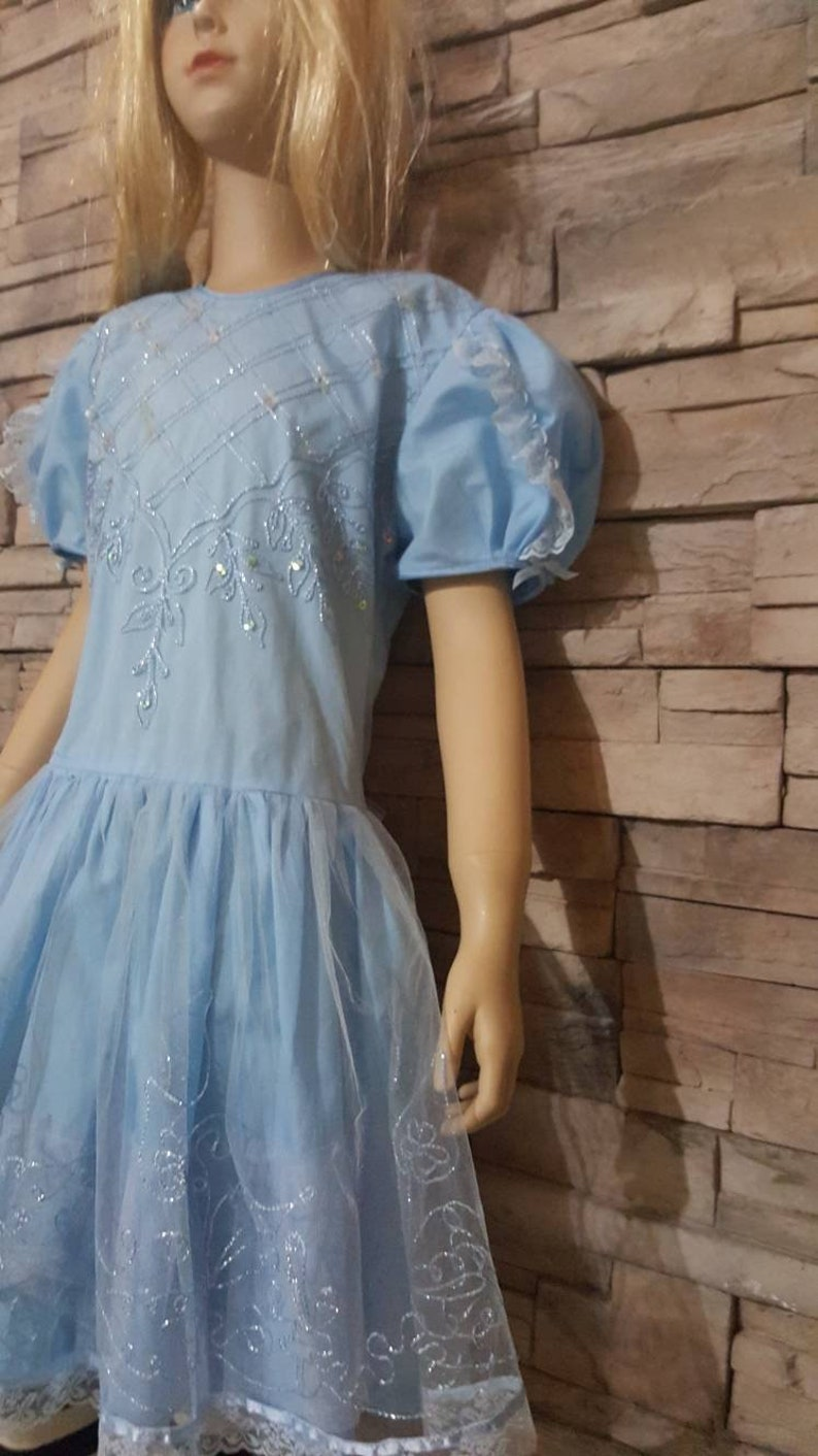 Alice In Wonderland Embroidered Princess Dress