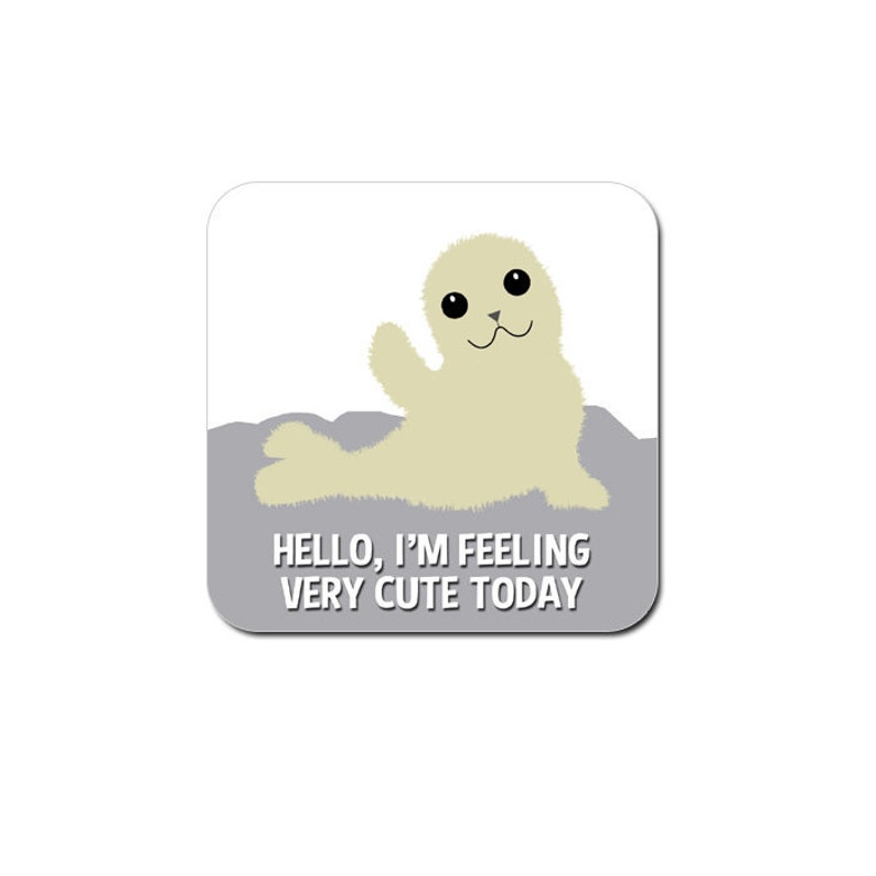 Funny cute baby seal coaster  funny gift for her  funny gift image 0