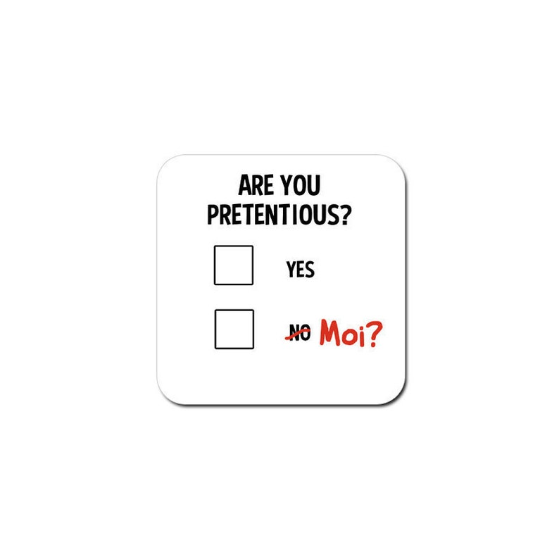 Funny coaster: 'are you pretentious'  secret santa image 0