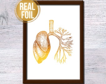 Human lungs anatomy poster Real gold foil Human lungs print Vintage illustration Anatomical foil poster Medical decor Office wall decor G286