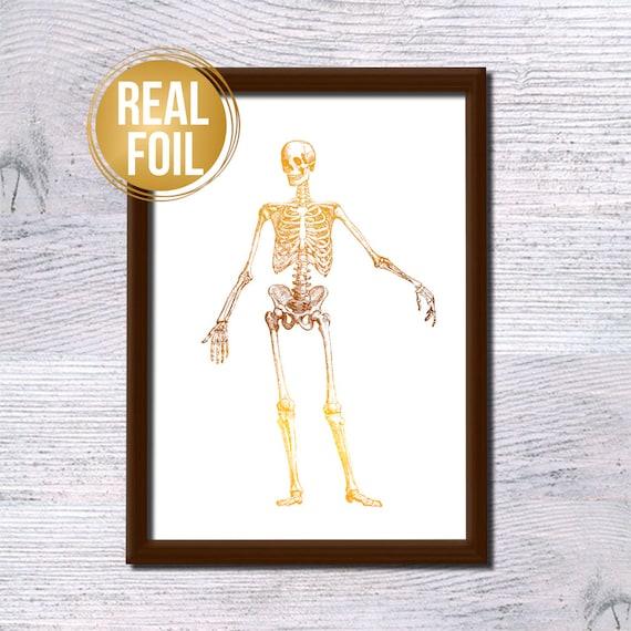 Vintage Anatomy Skeleton Real Foil Print Human Body Poster Etsy