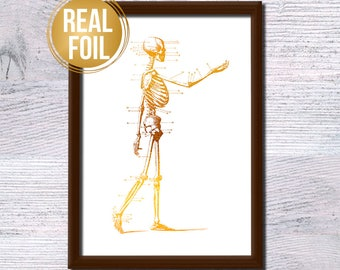 Gold foil skeleton poster Anatomical print Vintage skeleton illustration Medical wall decor Doctor gift Anatomy poster Real gold foil G267