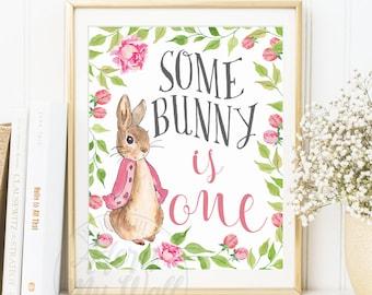 First Birthday Girl, 1st Birthday, Some Bunny Birthday, Some Bunny is One, Bunny Birthday Decorations, Peter Rabbit, Bunny, Rabbit Party,
