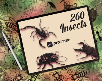 260 Insects  stamp pack for procreate, procreate butterflies and bugs, procreate insects, procreate dragonflies, beetles