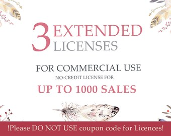 Package of Three Extended Licenses. One license applies for one item. For sale UP TO 1000 sales. No Coupon Codes Please.