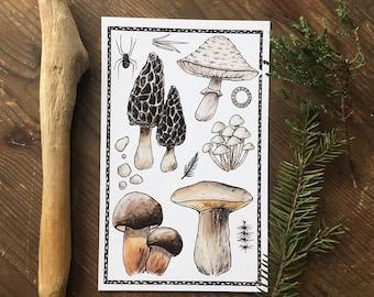 Shrooms Print
