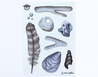 Sea Treasures Sticker Sheet