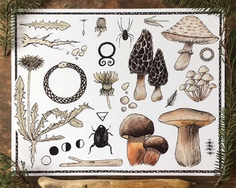Shrooms and Dandelions Print