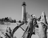 Crisp Point Lighthouse with driftwood photo. Michigan landscape print. Fine art Lake Superior scene. Cottage, beach, home decor. Free ship!