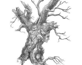 Fine Art Print / Folklore and Fairytales / Fantasy Artwork: Dryad
