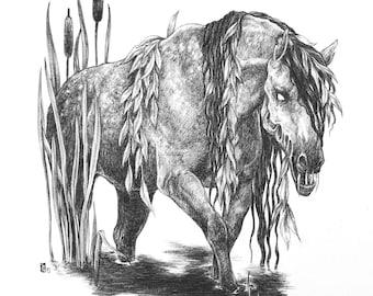 Fine Art Print / Folklore and Fairytales / Fantasy Artwork: Kelpie