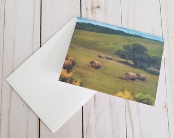Haybales Greeting Card   Acrylic Painting Print With Blank Inside