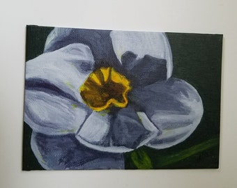 Daffodil - Original Art - Acrylic Painting on Canvas Panel