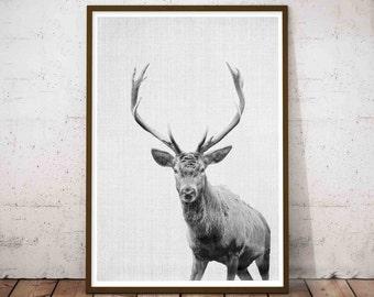 Deer Print, Deer Antler Decor, Large Printable Woodland Animal Nursery Decor, Rustic Nursery, Hunting Nursery Wall Decor, Deer Head Download