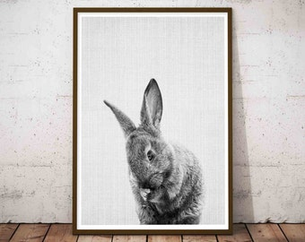 Woodlands Nursery Art, Black and White Baby Animal Print, Rabbit Print, Baby Bunny Print, Printable Black and White Bunny, Rabbit Art