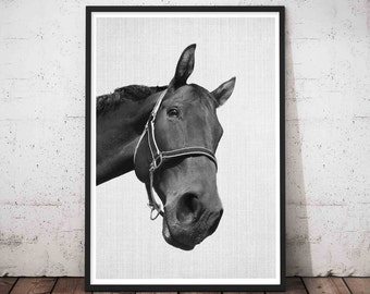 Black and White Horse Print Wall Art Photography, Large Modern Minimalist Horse Poster, Equestrian, Wild Horse Photo, Girls Room Decor