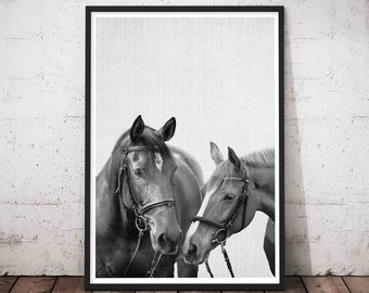 Horse Print, Modern Minimalist, Wall Art Photography, Minimalist Horse, Equestrian, Wild Horse Photo, Girls Room Decor, Digital Download