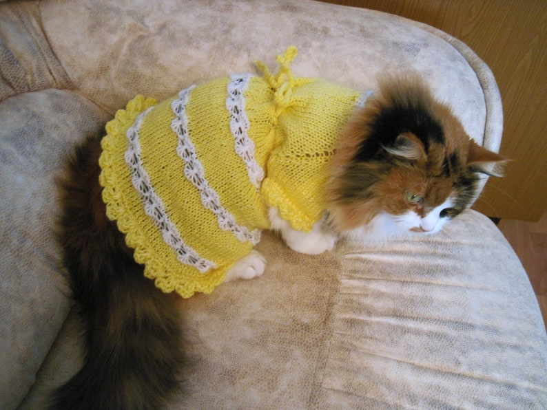 Knitted cat Clothing Pet Gift Pet Dresses cat sweater wedding image 0