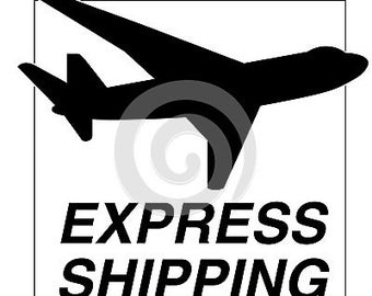 EXPRESS SERVICE (delivery within 2 days from the estimate shipping date (5 days for international orders)