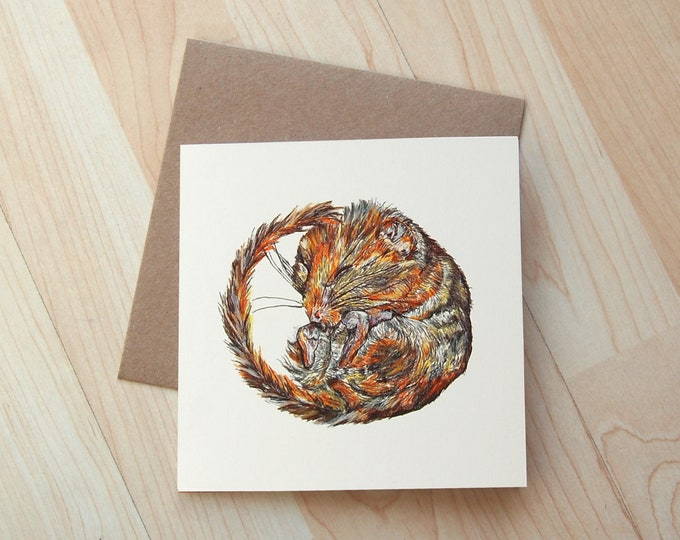 Dormouse illustration Greetings Card printed onto eco friendly card