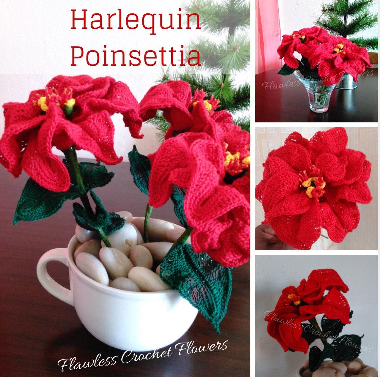 Crochet Poinsettia Pattern Poinsettia Harlequin Pattern Easy Etsy
