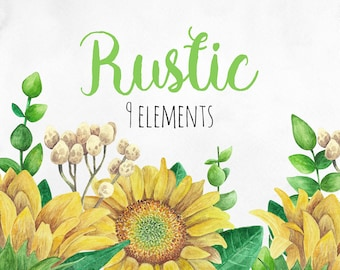 Rustic Clip Art Watercolor Sunflower Clipart Country Yellow Flowers Floral Png Set Summer Botanical Download Nature Hand Painted