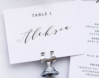 Evie Modern Script Place Cards, Name Cards, Printable Place cards or Printed Place Cards, Names and Table Numbers, Place Card Holder