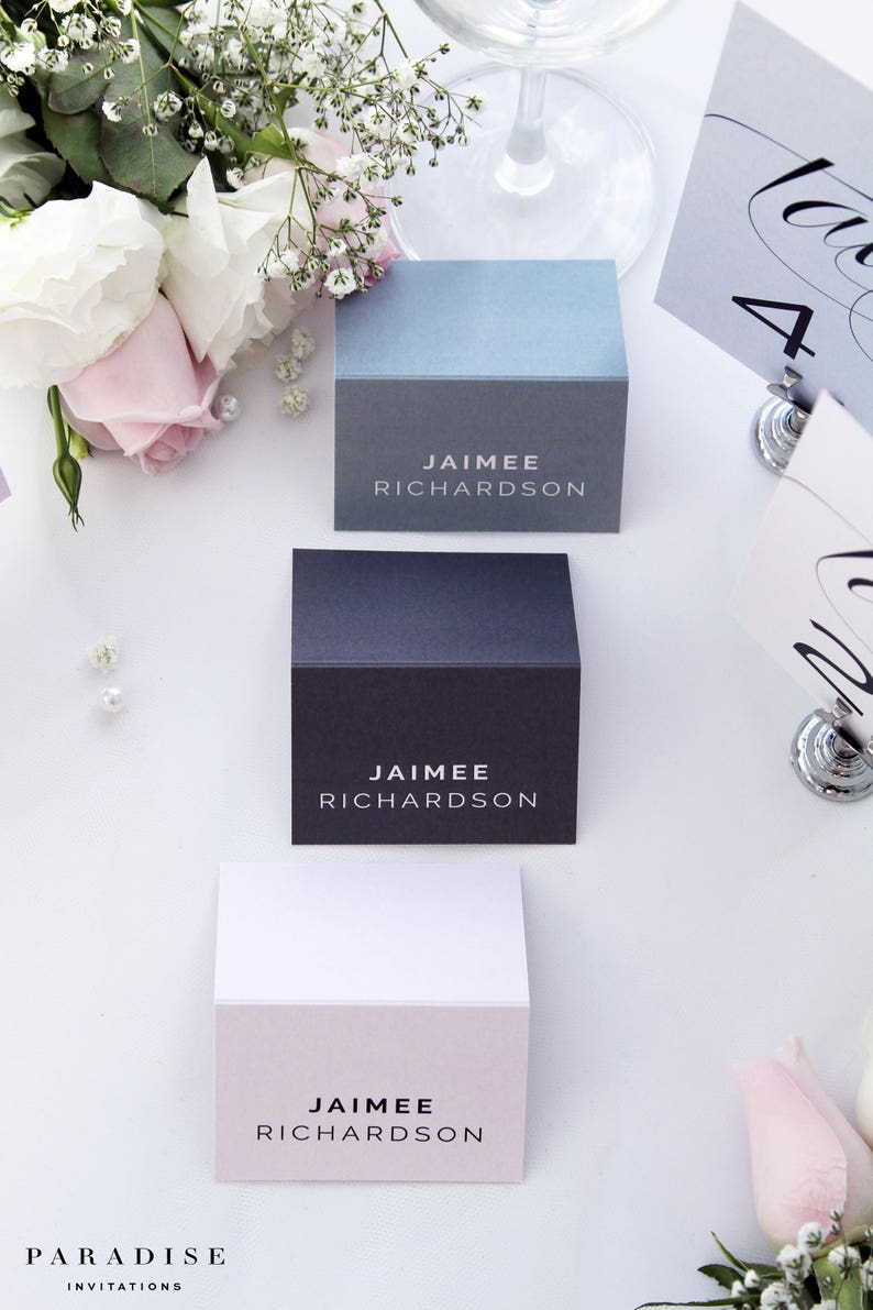 Matching Stationery Available Justine Place Cards Printable Place cards or Printed Place Cards Pink Dusty Blue Place cards Name Cards