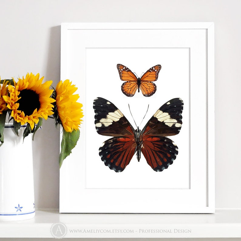 image regarding Printable Butterflies named Butterfly Artwork Print Printable Butterflies Poster Butterflies Wall Decor Mother nature Print Gals Bed room Decor Insect Household Decor Electronic Obtain