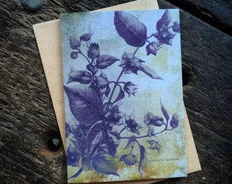 BellaDonna, Witchcraft Antique Botanical Print, Witch Herbs, Book of Spells, Wiccan Altar, Witch Home Decor, Luxury greeting card.