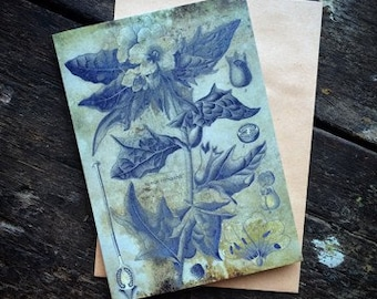 Henbane, Witchcraft Antique Botanical Print, Home Decor Plant Print, Witch Herbs, Book of Spells Wiccan Altar, Plant Decor, greeting card.