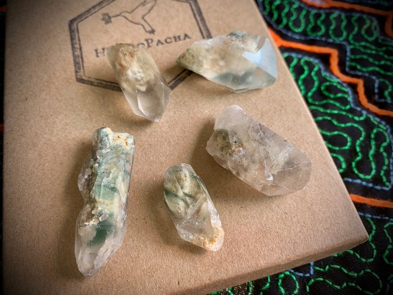 Green Chlorite Phantom Quartz Crystal Lot, Bulk Crystals, Crystal Grid,  Regeneration, Purification, Nature Spirits, Angelic Guides A560
