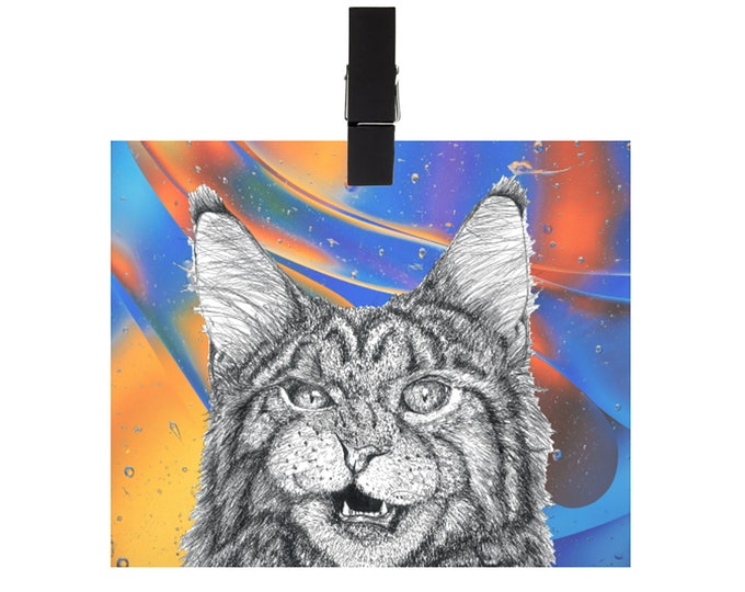 Colorful Meow Print