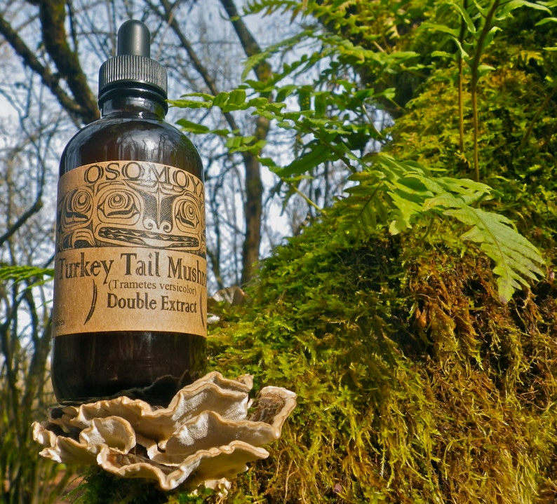 Wild Turkey Tail Mushroom Organic Alcohol Double Extract Tincture