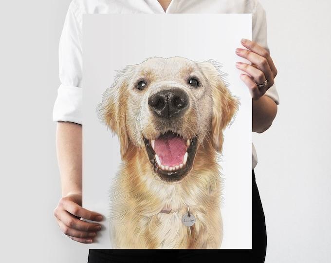 Colour Pet Portrait