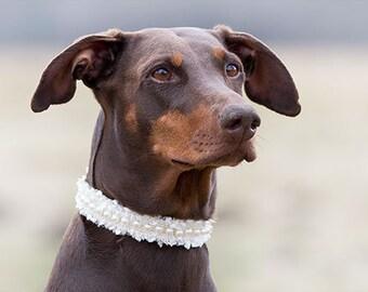 Hochzeit Halsband Für Den Hund