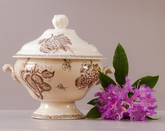 French Ironstone Soup Tureen | Tea Stained Antique | Ironstone Tureen | French Country style | Insect and Plant Decor | Tea Staine Ironstone