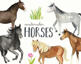 Watercolor Horses Clipart   Horse and Pony Breeds - Shetland, Clydesdale, Appaloosa, Running Horses - Instant Download Digital PNG Images