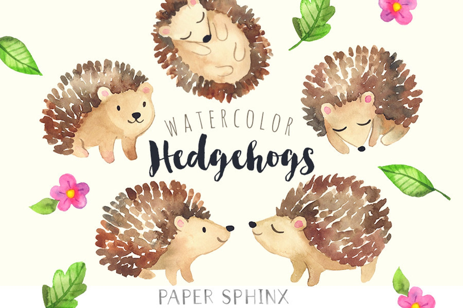 aquarell igel clipart baby wald tiere wald igel clipart  etsy
