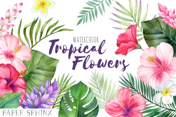 Watercolor Tropical Flowers Clipart Hawaii Clipart Etsy