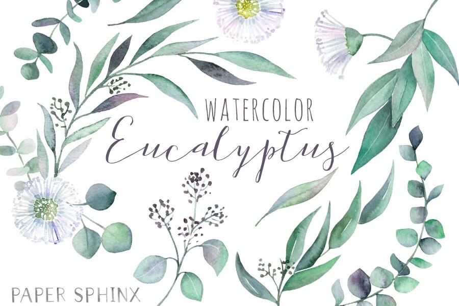 aquarell eukalyptus clipart gr n blumen bl tter zweige etsy. Black Bedroom Furniture Sets. Home Design Ideas