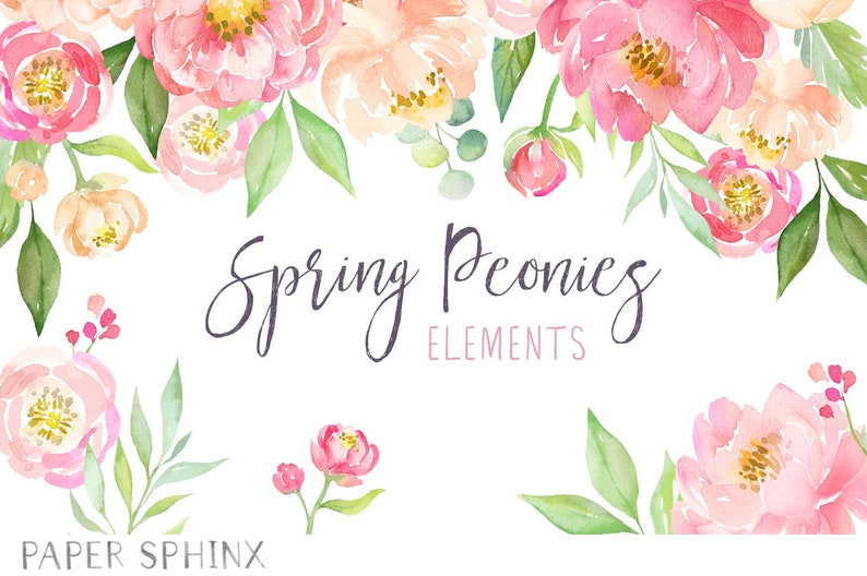 Watercolor Peonies Clipart  Spring Wedding Flowers  Coral image 0