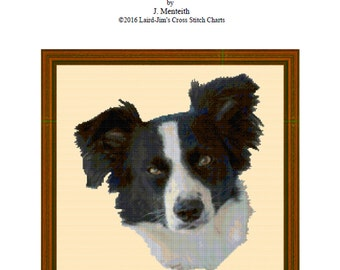 BORDER COLLIE  Cross Stitch Chart