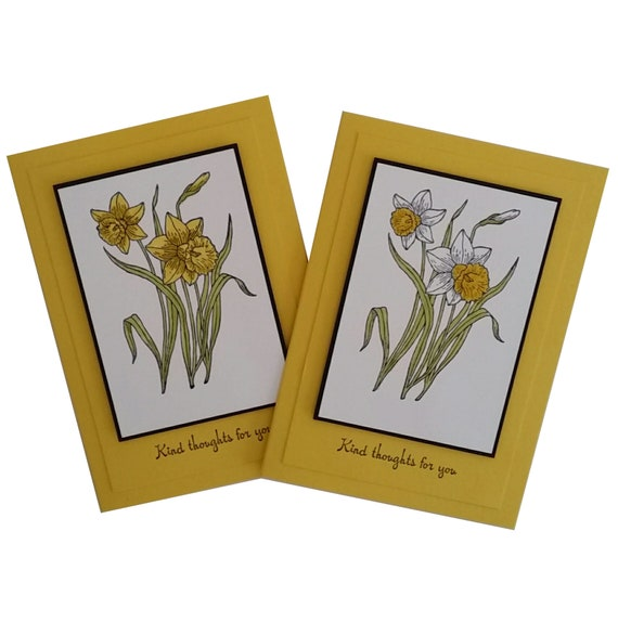 10 Spring Daffodil Remembrance Florist Cards /& Cello Envelopes /& Card Holders