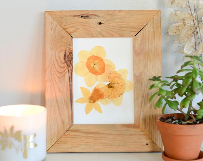 Daffodil / March | Print artwork of pressed flowers | 100% cotton rag paper | Birth month flowers, Botanical artwork, herbarium